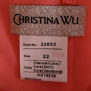 Christina Wu Dresses - Formal 👗 dress